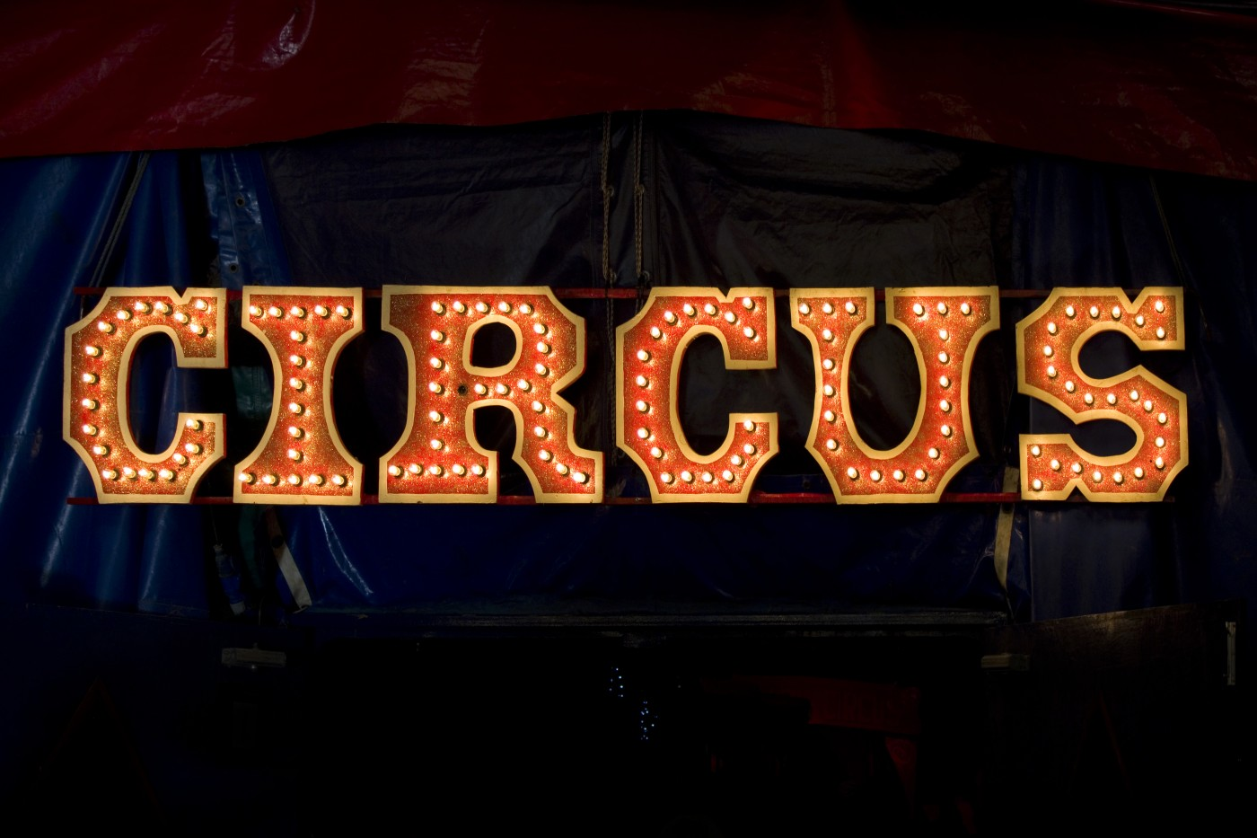 NeuroVive Awaiting Topline Results of CIRCUS Trial with CicloMulsion