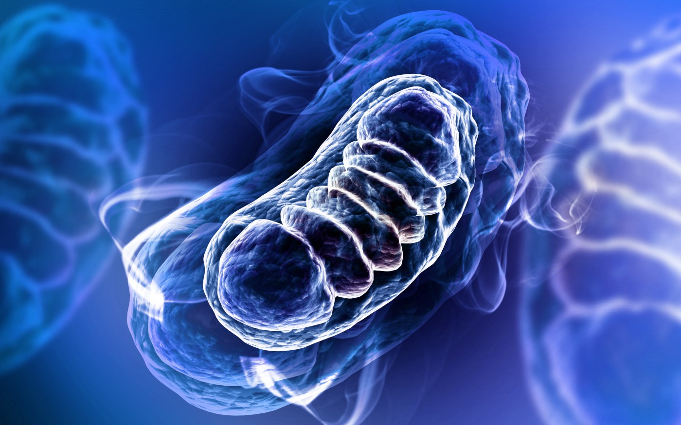 NIH Testing Way to Boost Mitochondrial Health
