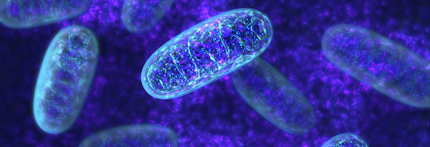 Older Moms More Likely to Pass Along Mitochondrial DNA with Mutations, Study Finds