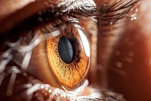 Gene Therapy Looks Promising in Patients with Leber's Hereditary Optic Neuropathy
