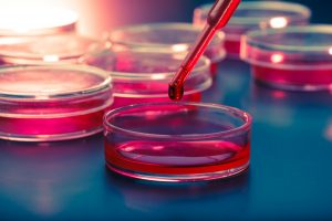 New Genetic Insights Could Pave Way to Potential Therapies for Mitochondrial Diseases