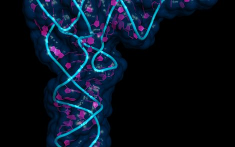 Genetic Mutations Affecting Protein Production Identified in Mitochondrial Disease