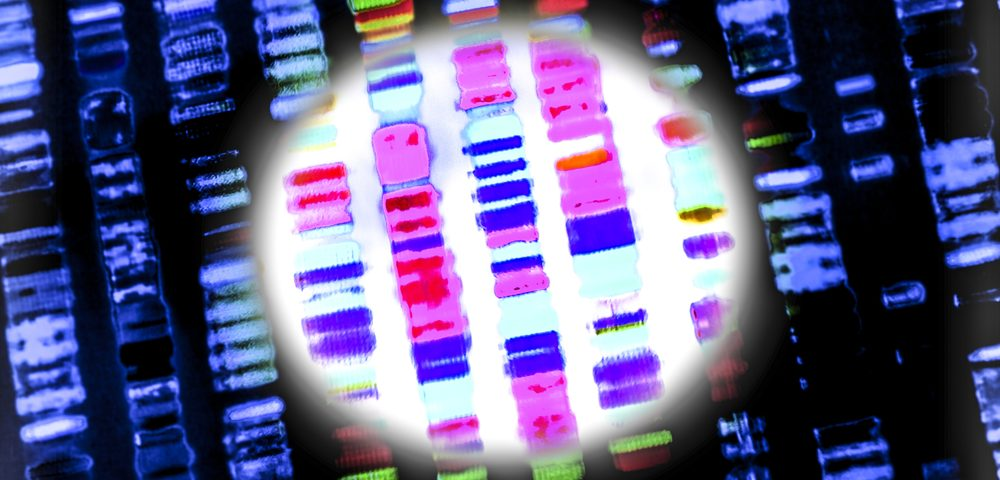 Researchers Discover Gene Defect Linked to New Type of Multiple Mitochondrial Dysfunction Syndrome