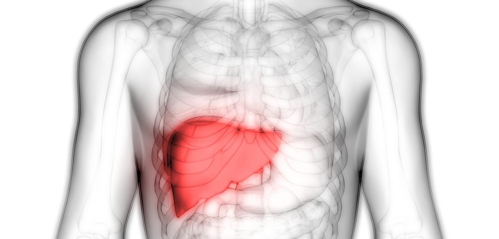 Targeting Mitochondria Degradation May Help Halt Liver Cancer, Study Suggests