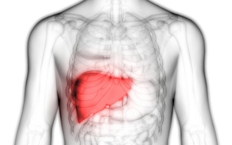mitophagy and liver cancer