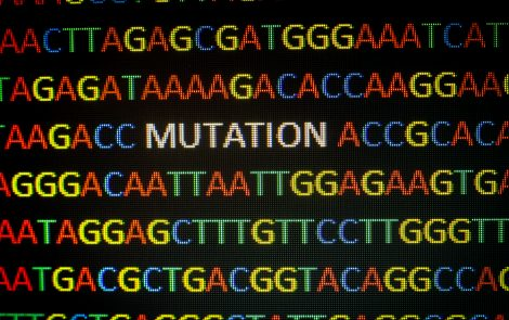 Genetic Counseling for Mitochondrial Disease